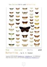 뉴질랜드나비와나방New Zealand Moths and Butterflies.