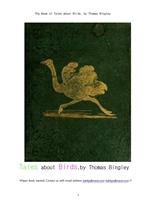 새 조류에 관한 이야기들.The Book of Tales about Birds, by Thomas Bingley
