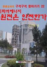 비화석에너지 원전은 안전한가?