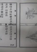 고금도서집성 의부전록 의술명류열전7 510권 명나라1